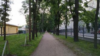 Петербуржцам вновь можно гулять по паркам и скверам после просушки