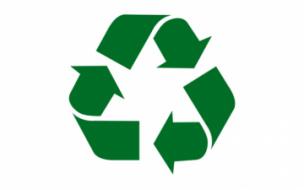 Раздельный сбор мусора получит поддержку правительства Ленобласти