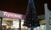 """На площадях Петербурга полиция под новогодними елками искала """"бомбы"""""""