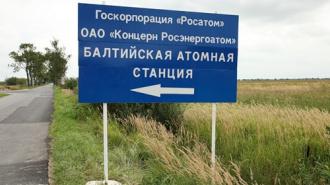 Противники возведения Балтийской АЭС обратились к дипломатам Евросоюза