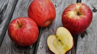 ФАС зафиксировала почти двойной рост цен на яблоки в Петербурге