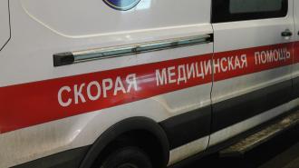 В Петербурге неизвестный ударил ножом в живот беременную