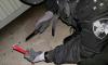 Детская игрушка стала причиной выезда взрывотехников в жилой дом на Каменноостровском проспекте