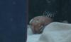"""Красноярск: у школы детей """"встретил"""" труп молодой женщины"""