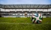 Почти половина жителей Ленобласти не интересуется ЧМ по футболу