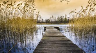 Синоптик рассказал, когда в Ленобласти откроется купальный сезон