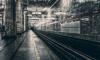 В петербургском метро обокрали студентку из Сирии