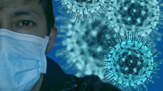 В Ленобласти не прибавилось новых случаев заражения коронавирусом