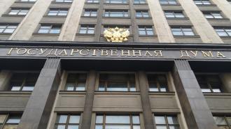 Госдума открыла заседание с минуты молчания в память о жертвах казанской трагедии