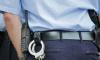 В Пушкинском районе Петербурга полиция задержала разыскиваемого мошенника