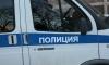 В Кронштадте грабителя остановил предупредительный выстрел полицейского