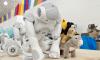 Во Всеволожском районе прошли соревнования по робототехнике среди школьников