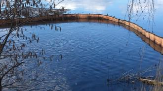 Неизвестные загрязнили нефтепродуктами Финский залив в Выборге