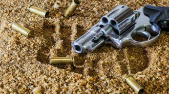 Эксперт прокомментировал законопроект, усиливающий контроль за оборотом оружия