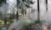 """В районе военного полигона """"Туганы"""" полыхает сильный пожар"""