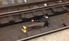 """Подгулявший мужчина упал на рельсы на """"Садовой"""""""