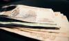 Полиция задержала несовершеннолетнего жителя Ленобласти за кражу денег