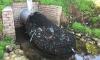 В Австралии с помощью обычных сетей, прикрепленных к канализационным трубам, выловили 370 кг мусора