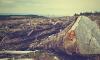 Прокуратура признала незаконной вырубку на Шлиссельбургском шоссе