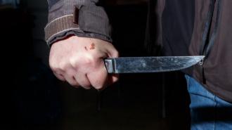 Школьник из Кудрово пырнул ножом одноклассника