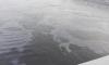 Очевидцы обнаружили нефтяное пятно у Володарского моста