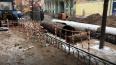 В двух районах Петербурга начали проверку тепловых сетей