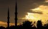 Саудовская Аравия и Турция готовятся к наземной операции в Сирии