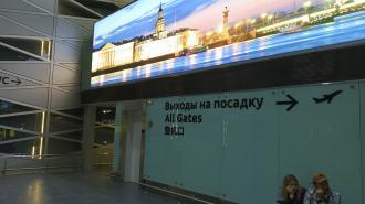 Школьники не смогли вылететь из Петербурга в Новосибирск. Прокуратура проводит проверку
