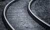 Женщина с дочерью лишились конечностей под поездом в Новгородской области