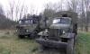 Запугали: жители Крестовского острова запаниковали от множества военных людей и машин