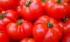 В Петербурге уничтожили 3 тонны овощей из Польши и Турции
