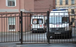 Число заболевших и выздоровевших от коронавируса в Петербурге снизилось по итогам месяца