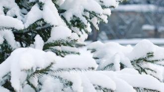 В ночь на среду в Петербурге ударят 18-градусные морозы