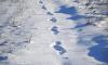 Во Всеволожске грабители обнаружили по оставленным на снегу следам