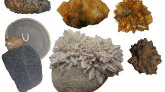 Ученые СПбГУ реконструируют климат Земли за 540 млн лет с помощью минералов