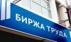 Биржа труда Ленобласти выплатила 16,2 миллиона рублей безработным и самозанятым