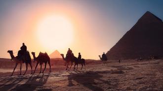 Возобновление авиасообщения с Египтом снизит стоимость туров в два раза
