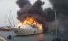 В турецком порту полыхала дорогущая яхта российского бизнесмена