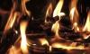 В Киришах влюбленная пара напилась и заживо сгорела в своей квартире