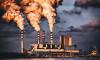 За нарушение экологии Гатчинскую компанию оштрафовали