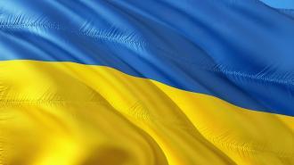 МИД Украины отреагировал на задержание своего дипломата в Петербурге