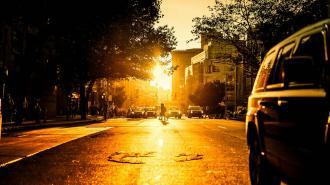 Во вторник в Ленобласти будет жарко и солнечно