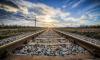 В Петербурге пройдут пикеты против роста цен на железнодорожные билеты