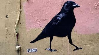 """Уличный художник VREZZKA: """"Стрит-арт подобен громкой фразе, брошенной в толпе"""""""