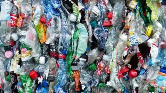 В РФ с 1 января на территории частных домов запретят сжигать мусор и разводить костры