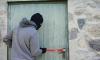 В Пушкинском районе из частного дома владелицы турфирмы воры вынесли полмиллиона рублей