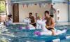 Футболисты сборной Англии оседлали надувных единорогов в бассейне