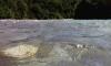 В российском автомобиле, сорвавшемся в горную реку в Абхазии, могло быть несколько человек