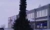 Власти Ноябрьска установили в центре города елку в форме фаллоса