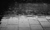 В воскресенье синоптики обещают дождь и солнце